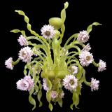 """Nastri Verdi"" Murano glass chandelier - 18 lights - green"